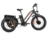 Addmotor MOTAN M-350 P7 Fat Tire Cargo E-Bike