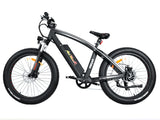 Addmotor 2018 MOTAN M-560 500W 48V Sport Fat Tire Electric Bike