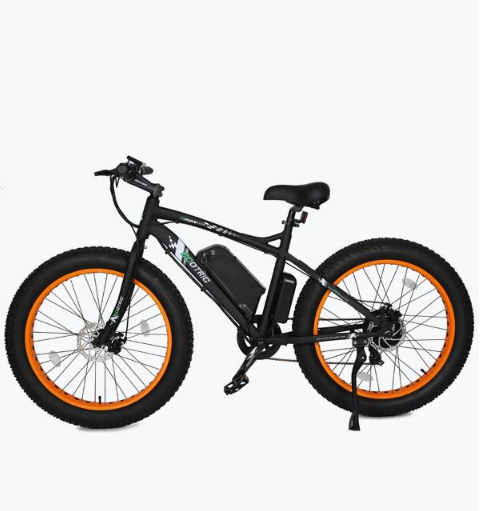 Ecotric Beach Snow 500w Fat Tire Electric Bike
