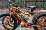 Electric Bike - Big Cat 2017 Fat Cat XL 500 Fat Tire Electric Bike