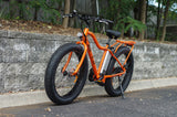 Electric Bike - Big Cat USA 2016 Fat Cat XL