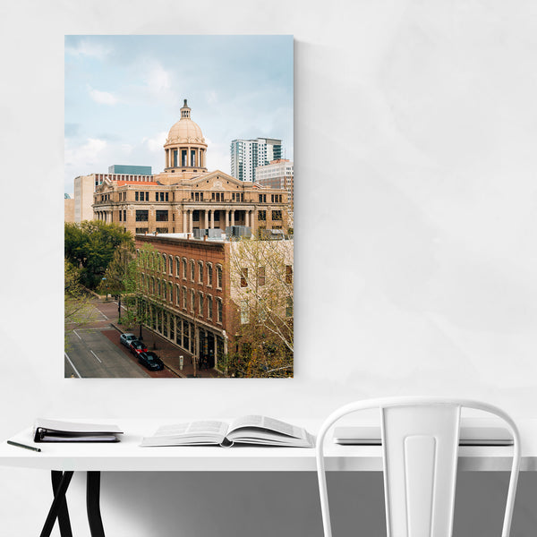 Houston Harris County Courthouse Art Print