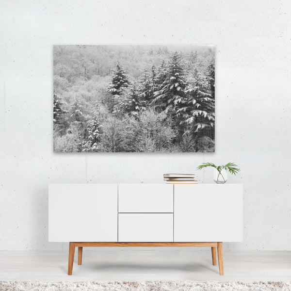 Forest Winter Nature Photo Art Print