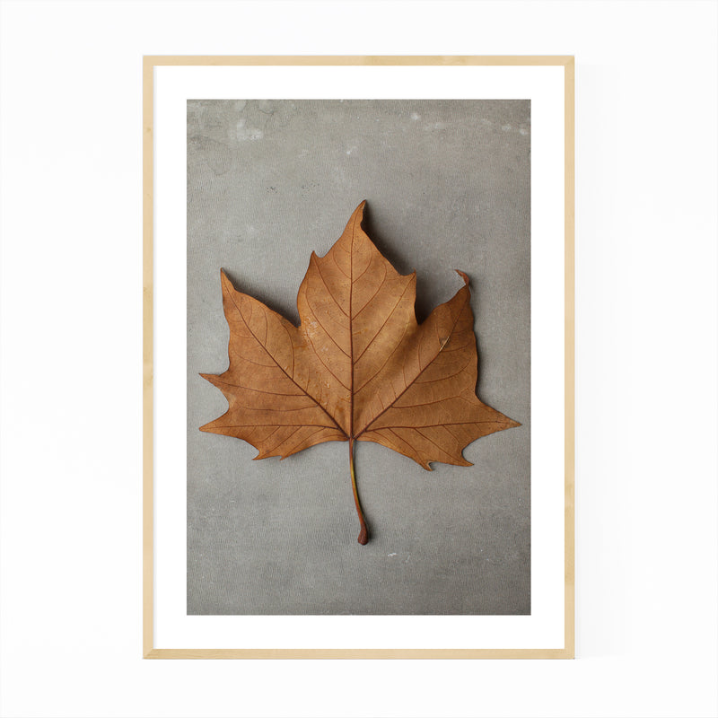 Autumn Maple Leaf Minimal Framed Art Print