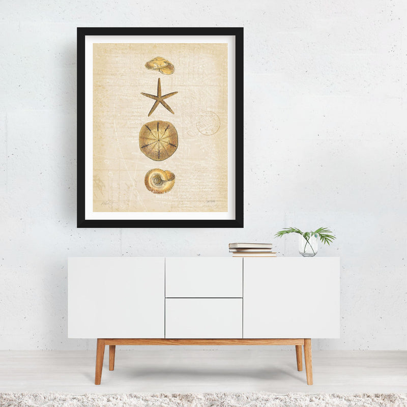 Beach Nautical Fish Illustration Framed Art Print