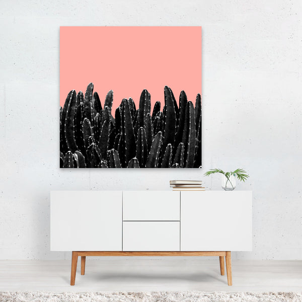 Black-and-white Botanical Cactus Canvas