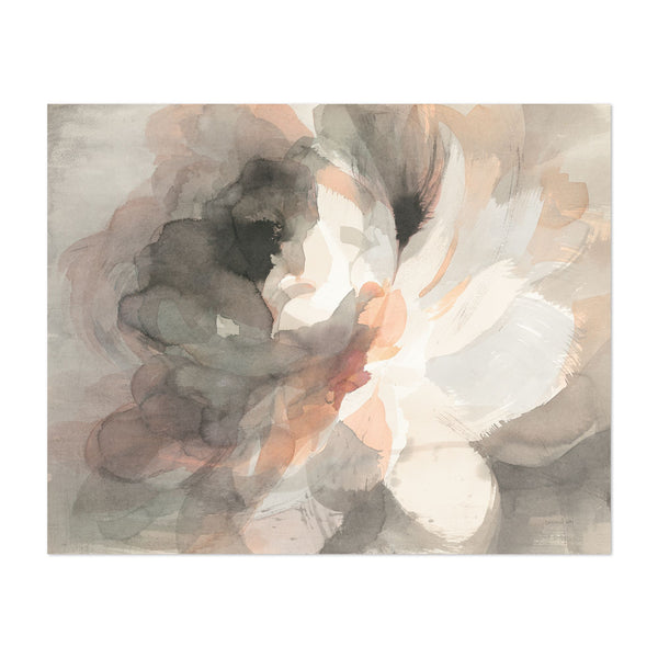 Floral Abstract Peonies Illustration Art Print