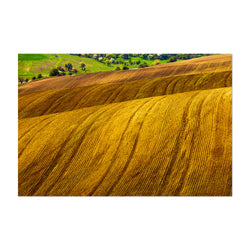 Bulgaria Farm Field Rural Nature Art Print