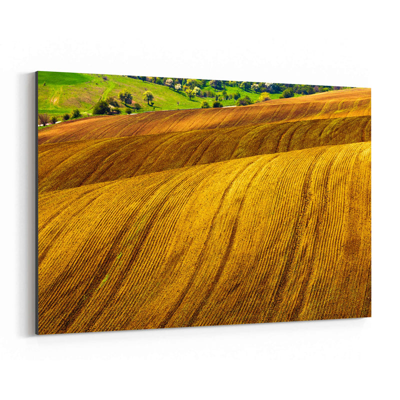 Bulgaria Farm Field Rural Nature Canvas Art Print