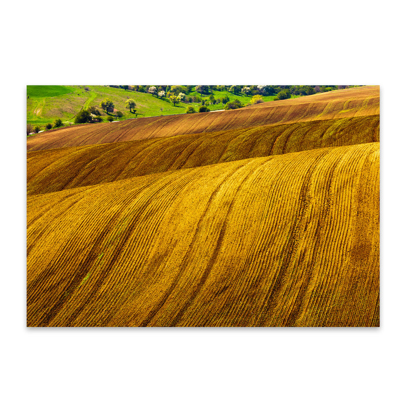 Bulgaria Farm Field Rural Nature Metal Art Print