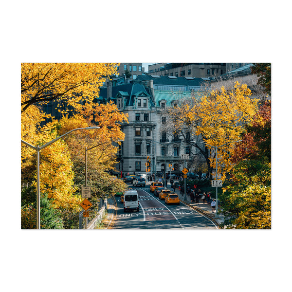 Central Park NYC New York Autumn Art Print