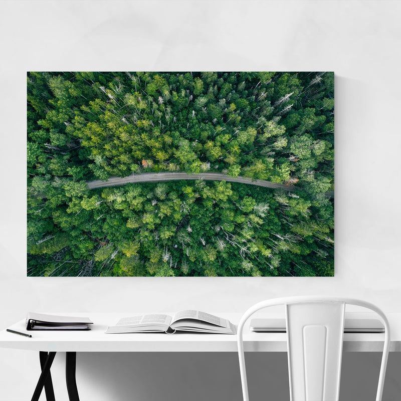 Aerial Trees Forest Dirt Road Canvas Art Print