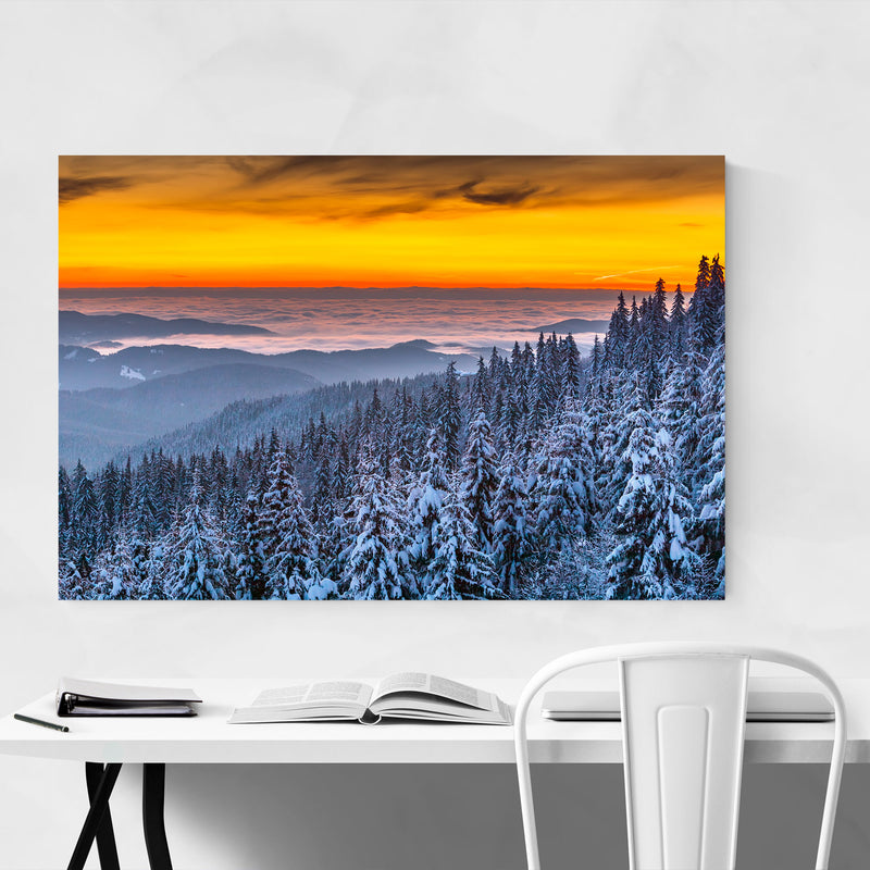 Bulgaria Pine Forest Snow Nature Canvas Art Print