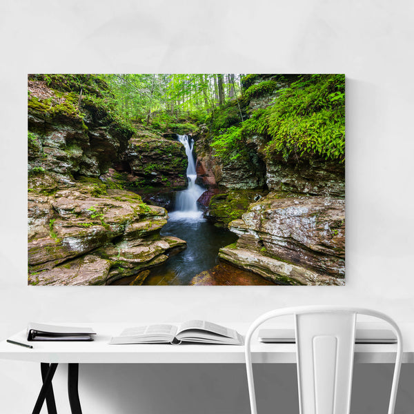 Ricketts Glen Forest Waterfall Art Print