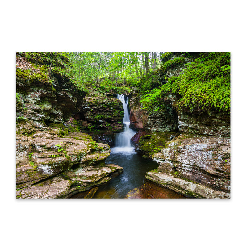 Ricketts Glen Forest Waterfall Metal Art Print