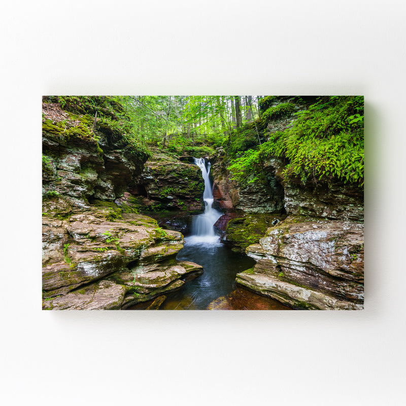 Ricketts Glen Forest Waterfall Mounted Art Print