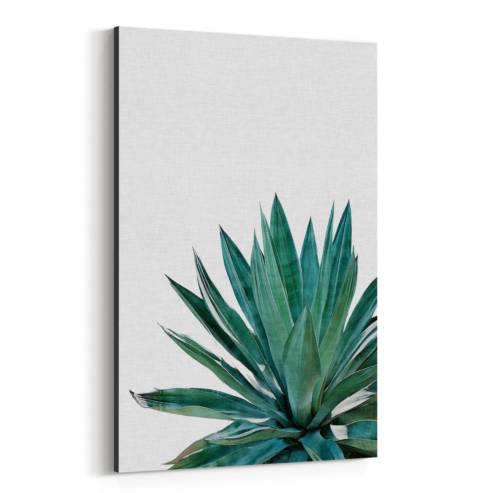 Agave Plant Floral Botanical Canvas Art Print