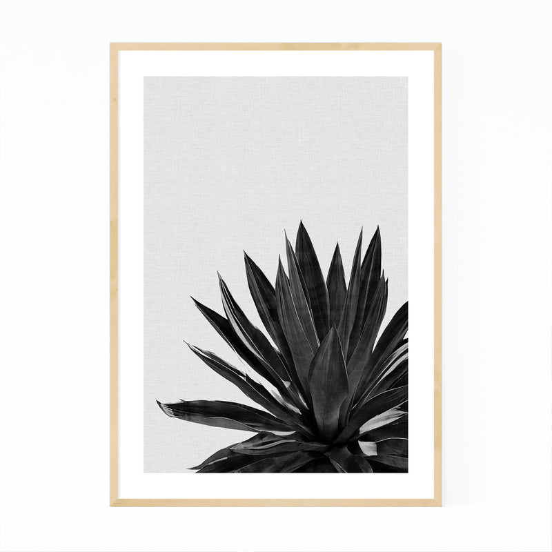 Black Agave Plant Botanical Framed Art Print