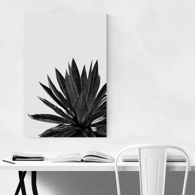 Black Agave Plant Botanical Canvas Art Print