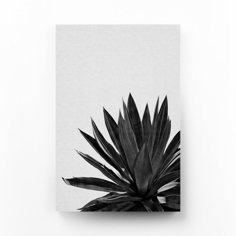 Black Agave Plant Botanical Mounted Art Print