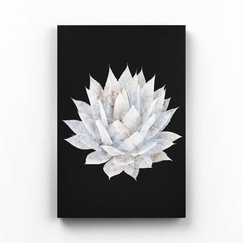 Agave Plant Botanical Floral Canvas Art Print