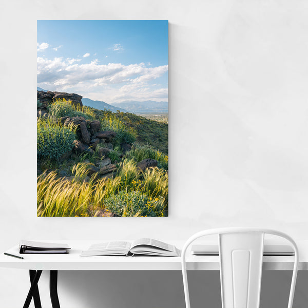 Palm Springs California Mountain Art Print