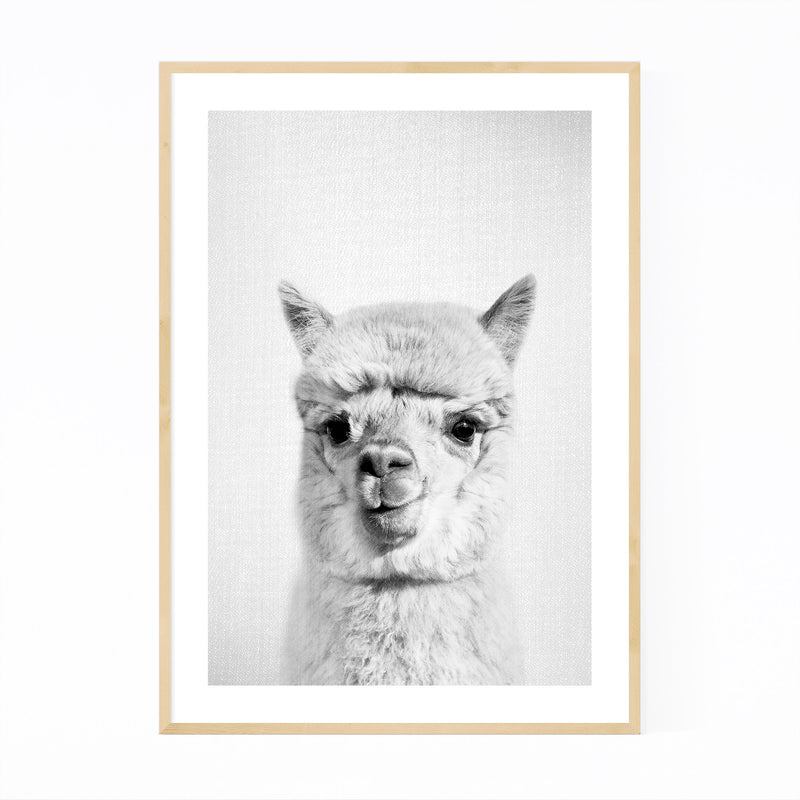 Nursery Alpaca Peekaboo Animal Framed Art Print