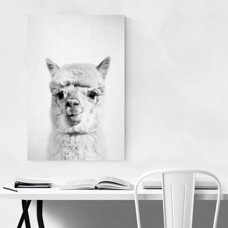 Nursery Alpaca Peekaboo Animal Metal Art Print
