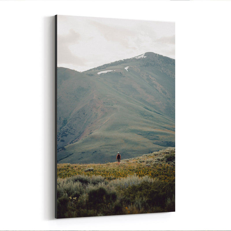 Jarbidge Wilderness Nevada Canvas Art Print