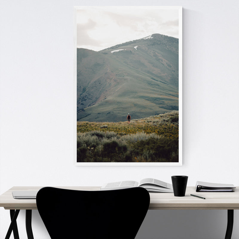 Jarbidge Wilderness Nevada Framed Art Print