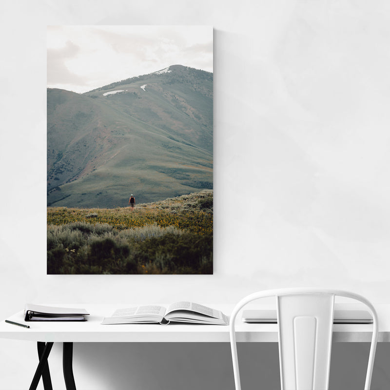 Jarbidge Wilderness Nevada Metal Art Print
