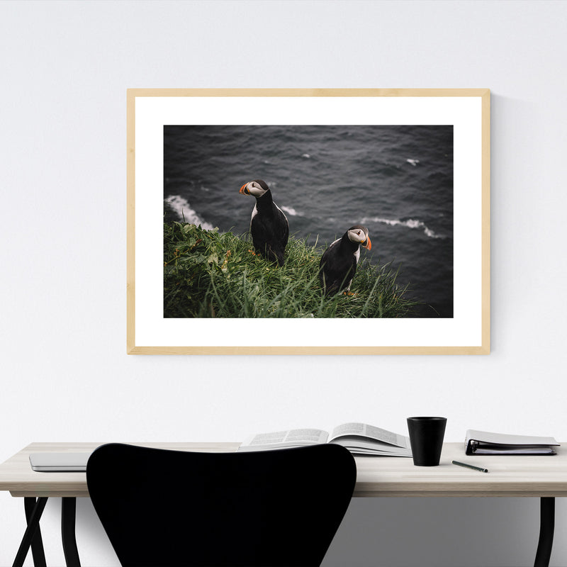 Faroe Islands Puffins Wildlife Framed Art Print