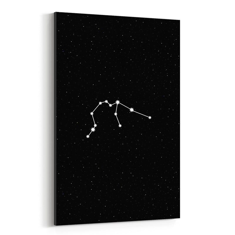 Night Sky Aquarius Astrology  Canvas Art Print