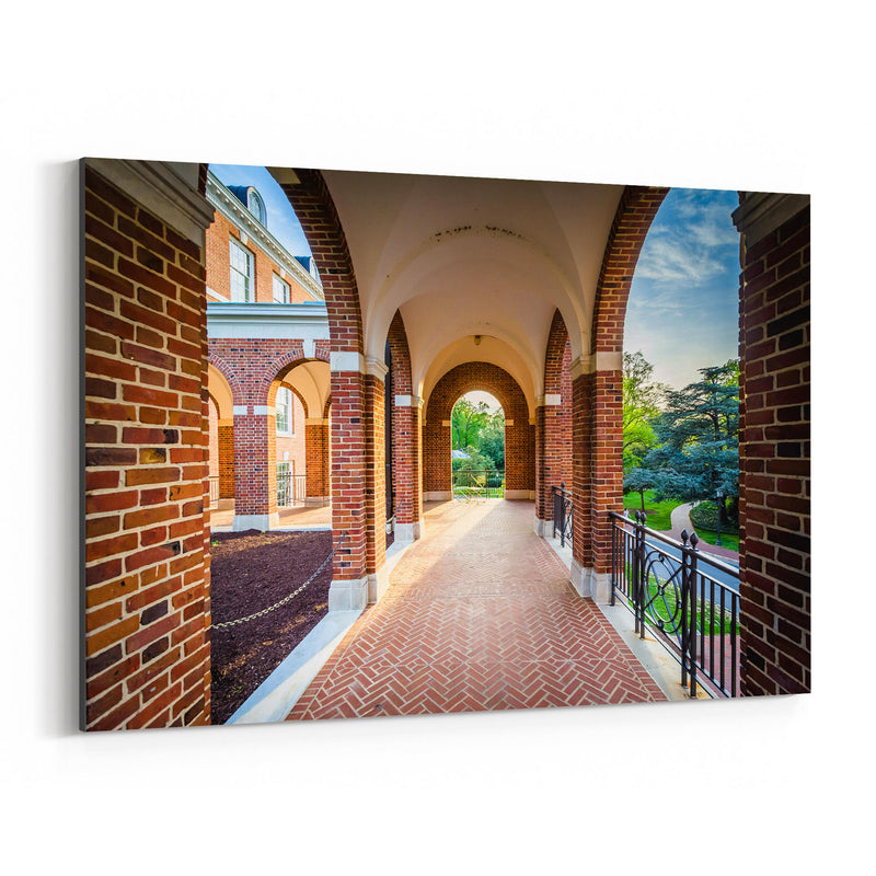 Johns Hopkins University Canvas Art Print