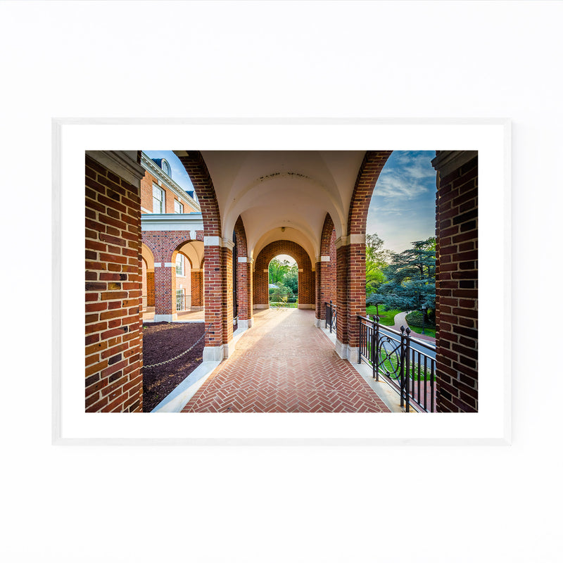Johns Hopkins University Framed Art Print