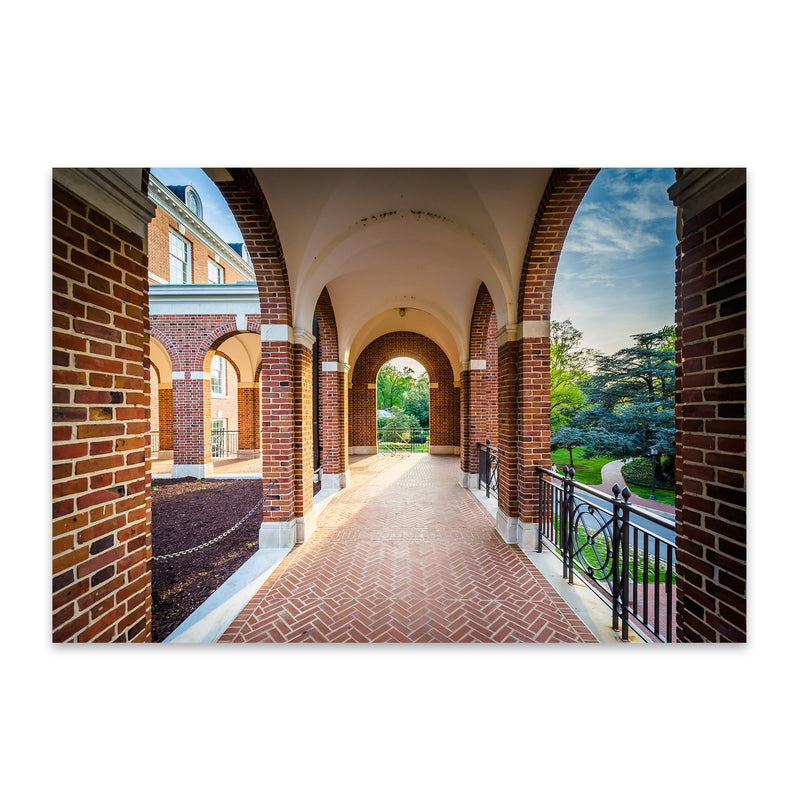 Johns Hopkins University Metal Art Print