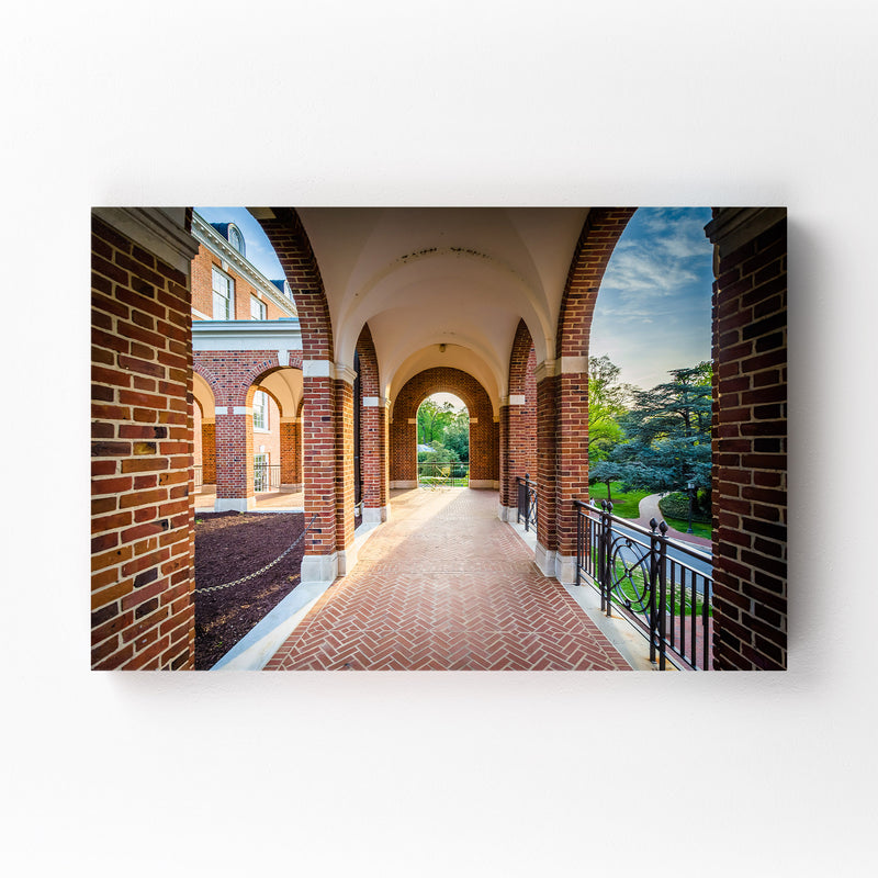Johns Hopkins University Mounted Art Print