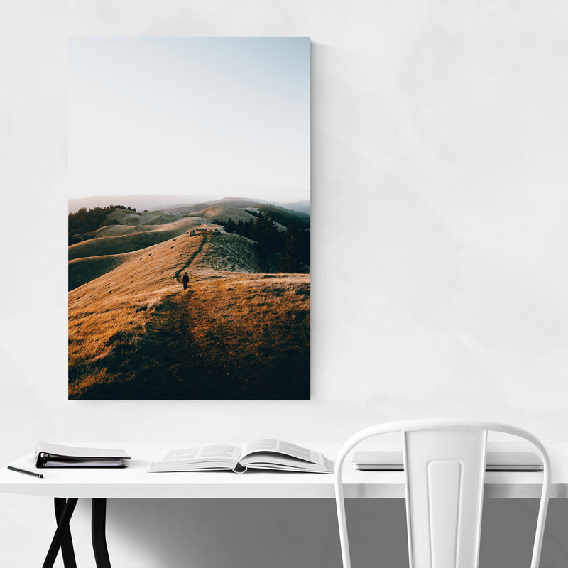 Nature San Francisco California Canvas Art Print