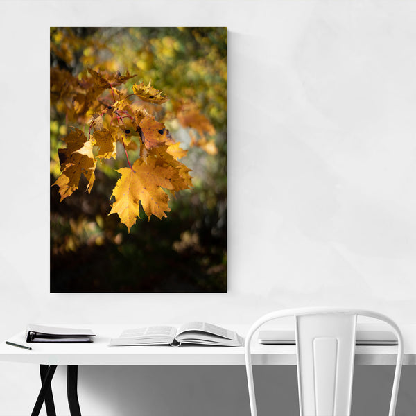 Autumn Fall Leaves Tree Nature Art Print