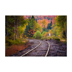 Autumn Railroad Train Track Art Print
