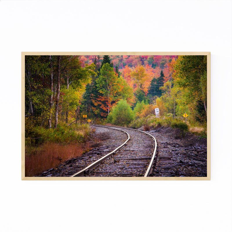 Autumn Railroad Train Track Framed Art Print