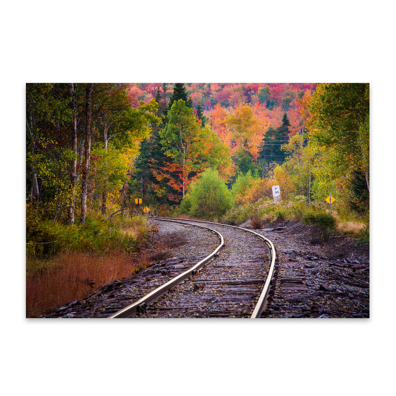 Autumn Railroad Train Track Metal Art Print