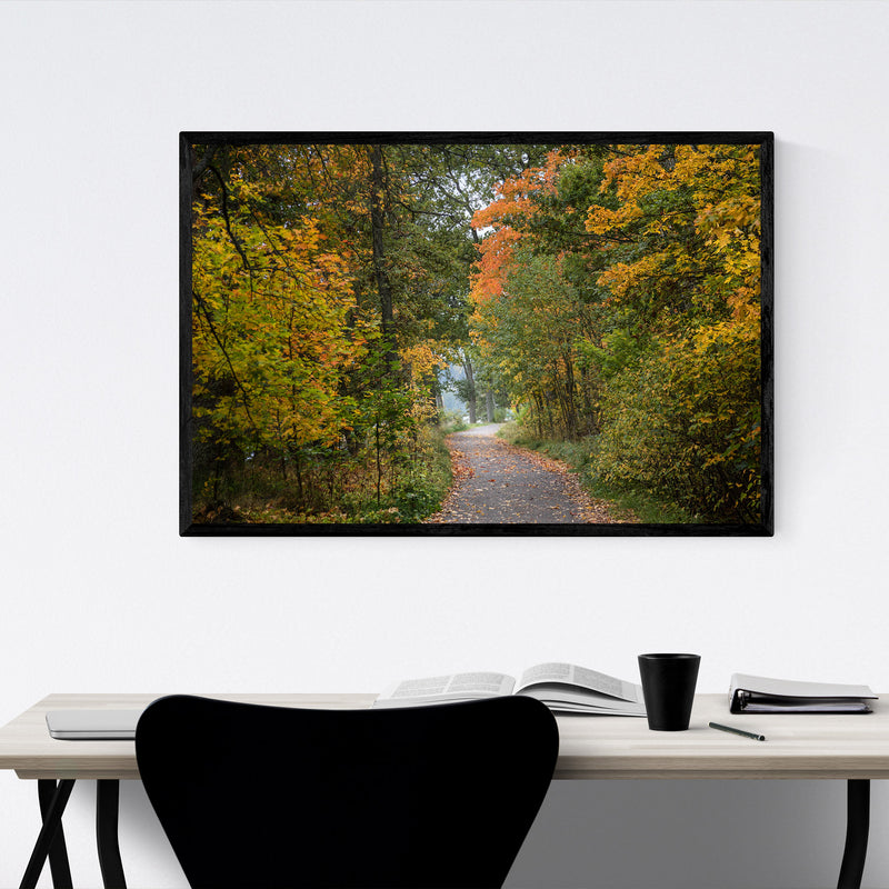 Autumn Fall Forest Trail Nature Framed Art Print