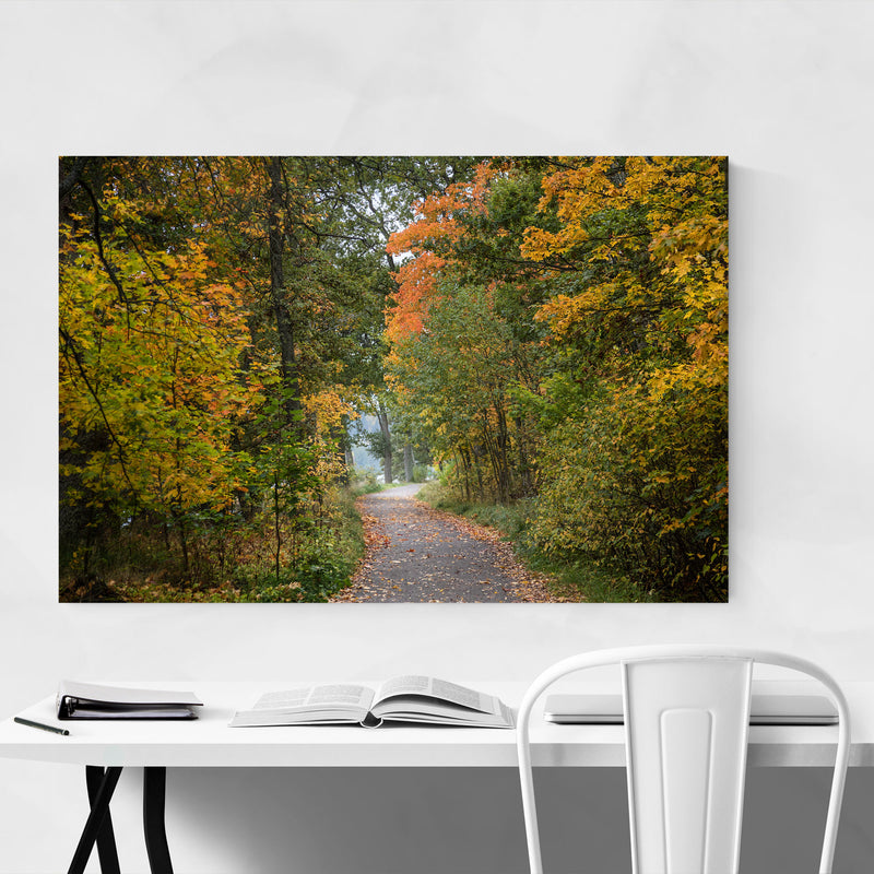 Autumn Fall Forest Trail Nature Canvas Art Print