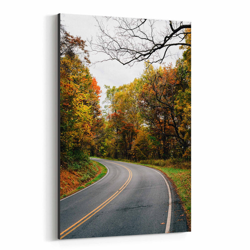 Shenandoah Skyline Drive Autumn Canvas Art Print