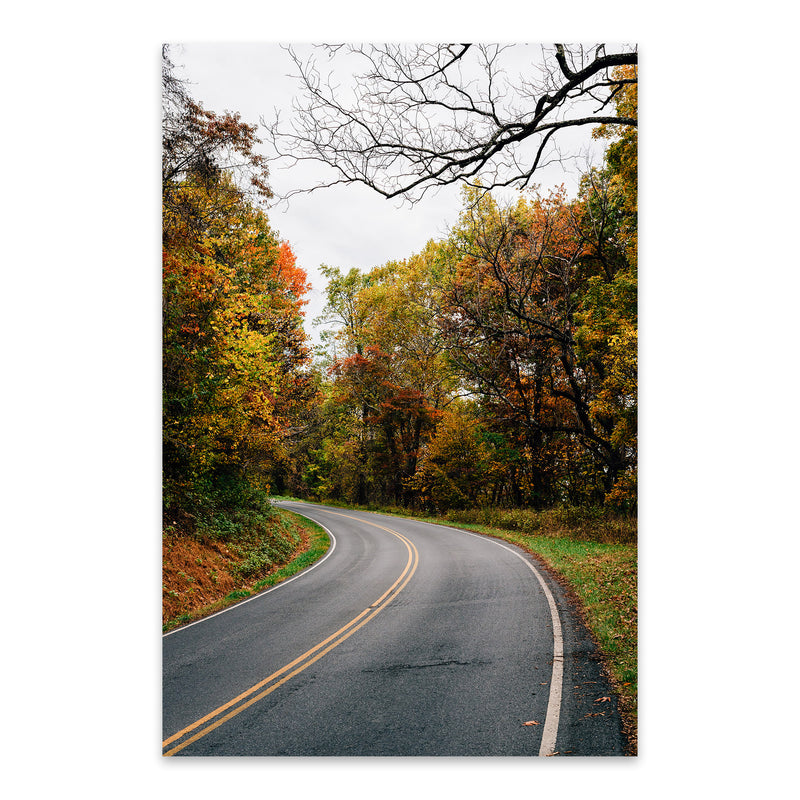 Shenandoah Skyline Drive Autumn Metal Art Print