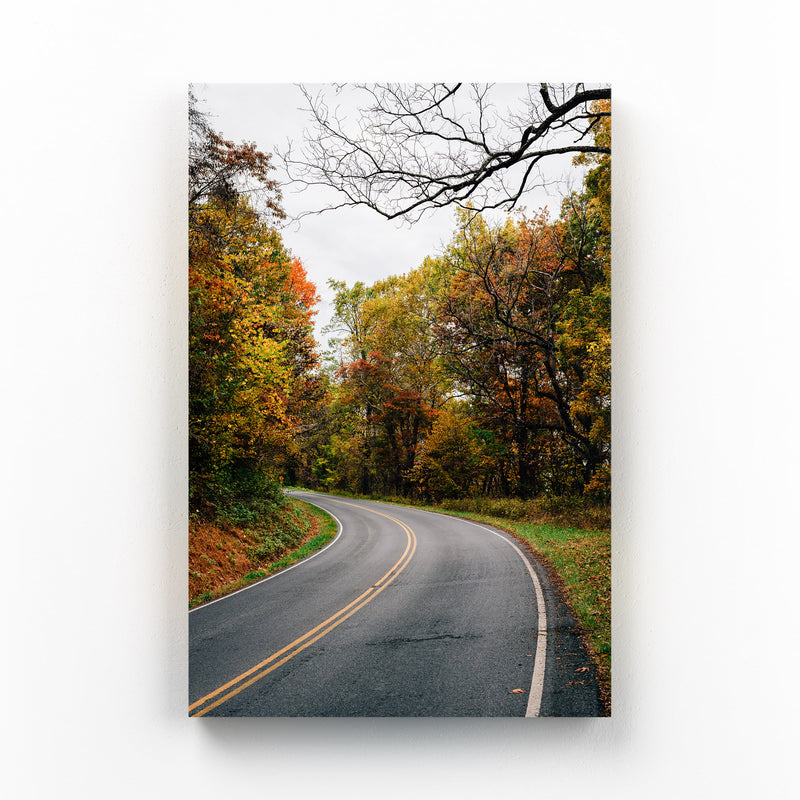 Shenandoah Skyline Drive Autumn Mounted Art Print