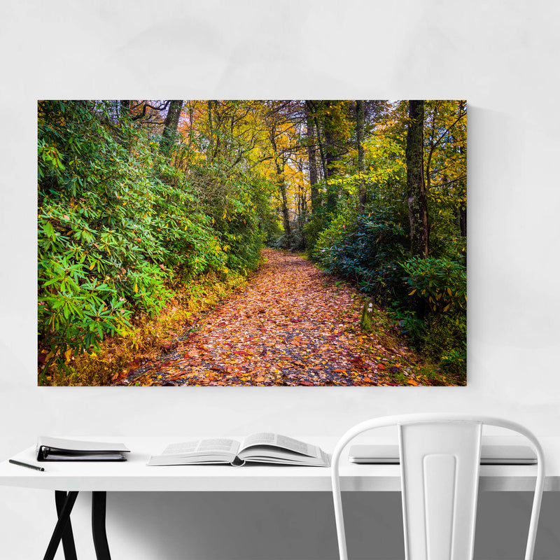 Autumn Fall Leaves on Trail Metal Art Print