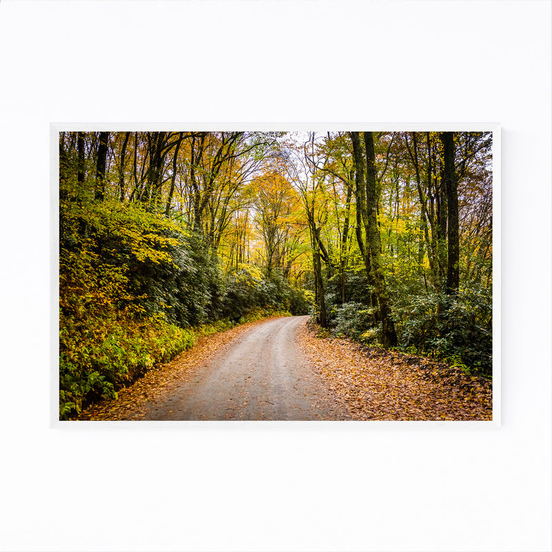 Blue Ridge Parkway Autumn Framed Art Print