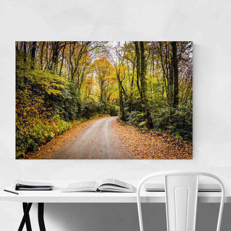 Blue Ridge Parkway Autumn Metal Art Print